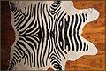 Zebra - Gerberei Polen