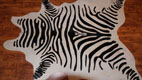 Gute qualitat Zebra - Gerberei Polen