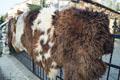 holland_sheepskin-Tannery, tanning of skins