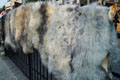 melerade_sheepskin-Tannery, tanning of skins