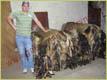 Viele Wildschweine und chef - Gerberei Polen